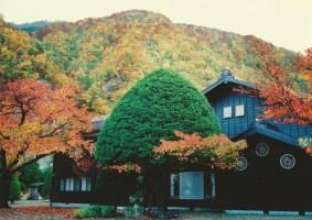 春夏秋冬と色鮮豊かな山の景色が楽しめます。